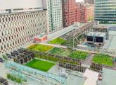 Urban-Agriculture-Lab.jpg
