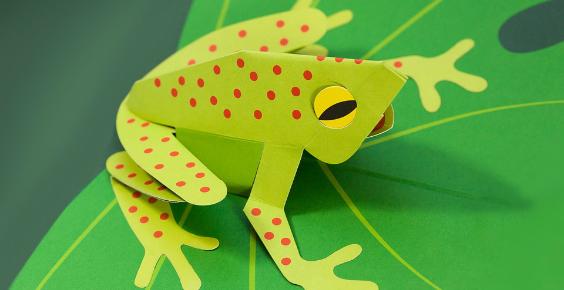 popupfrog564x290.jpg