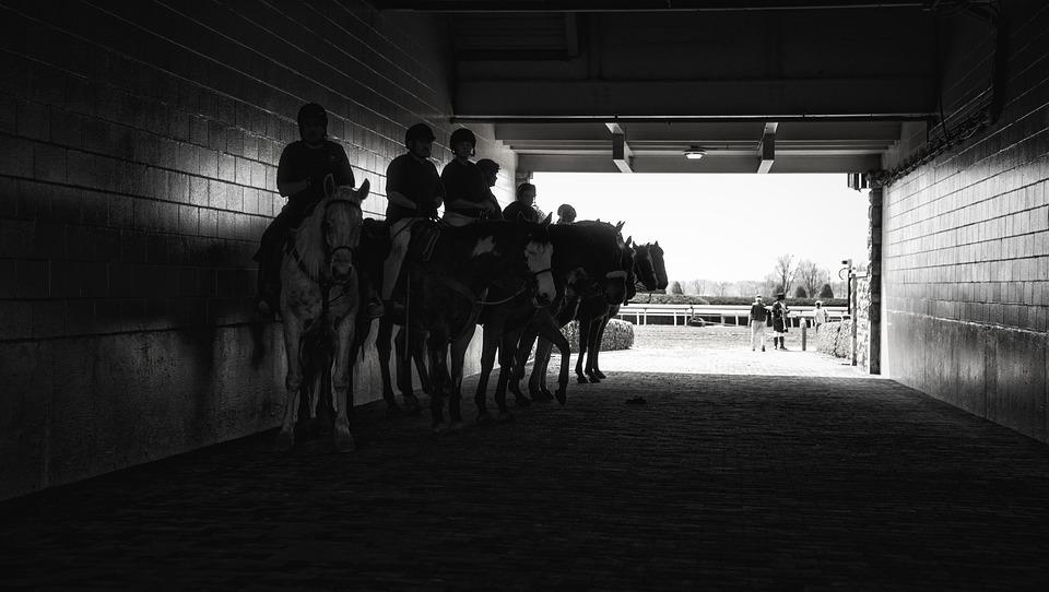 horse-race-1507083_960_720.jpg