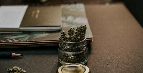 cannabis564x290.jpg