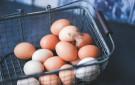 eggqualitymark135x85.jpg