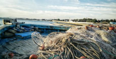 fishery458x236.jpg