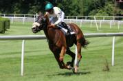 horseracingcentury179x118.jpg